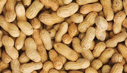 بادام زمینی