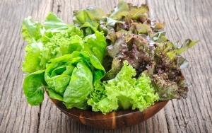 کدام مواد غذایی نیاز روزانه مایعات بدن را تأمین می کنند؟